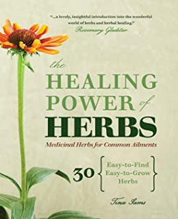 The Healing Power of Herbs: Medicinal Herbs for Common Ailments