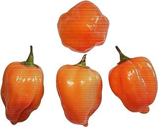 10 x Habanero Orange Semillas