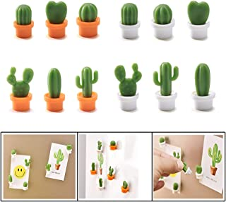 Decorative Refrigerator Magnets, Perfect Fridge Magnets for House Office Personal Use (Cactus)
