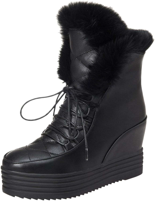 AicciAizzi Women Warm Lined Boots Hidden Heel