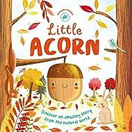 Little Acorn