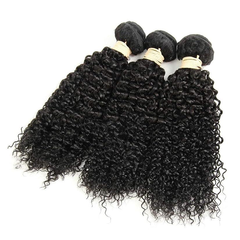 作曲家ガード浪費YAHONGOE ブラジルのバージン変態カーリーヘアバンドル人毛エクステンション横糸 - #1Bナチュラルブラックカラー、8