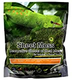 Galapagos (05248) Sheets of Real Moss, 8-Quart, Natural