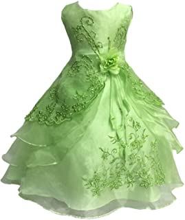 Shiny Toddler Little/Big Girls Embroidered Beaded Flower Girl Birthday Party Easter Dress Princess Dress with Petticoat