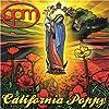 California Poppy by OPM