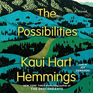 The Possibilities audiobook cover art