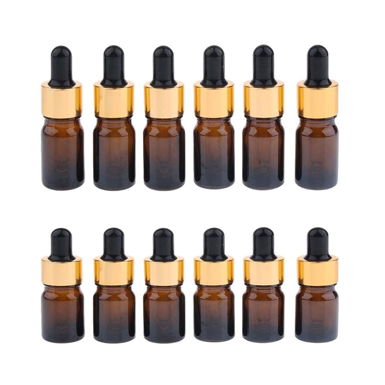 ひも体細胞銅Fenteer スポイトボトル 空ボトル 詰め替え 精油 化粧品 保存用 トラベル 携帯 5ml/10ml 12個入