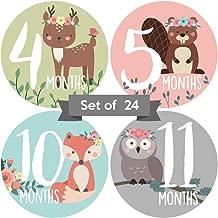 Baby Monthly Stickers | Woodland Animal Baby Milestone Stickers | Newborn Girl Stickers | Floral Month Stickers for Baby Girl | Baby Girl Stickers | Newborn Monthly Milestone Stickers | (Set of 24)
