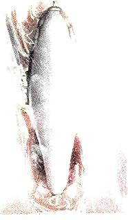 未使用 レイドジャパン デカダッジ 漆黒 RAID JAPAN DEKA DODGE SHIKKOKU