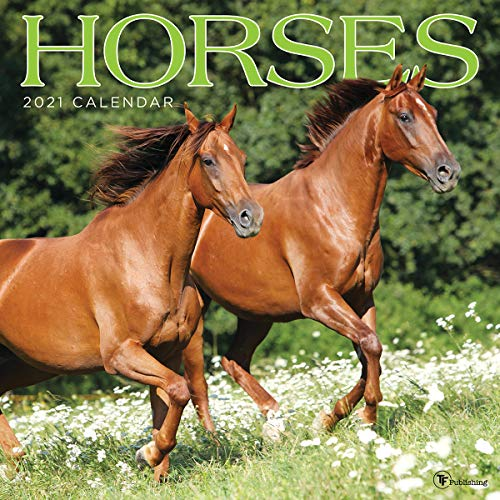 """TF PUBLISHING 2021 Horses Monthly Wall Calendar - Animal Photography - Planner with Contacts and Notes Space - Enhance Home or Office Planning and Organization - Premium Gloss Paper 12""""x12"""""""