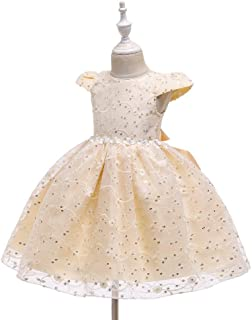 Luxury Princess Dress Baby Girls Under The Age of Solid Color Mesh Dress Embroidered Flower Pattern Dress Skirt Princess Tutu ryq (Color : Champagne, Size : 120cm)