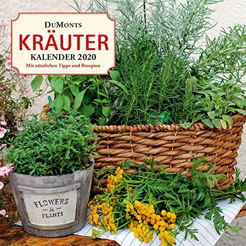 DuMonts Kräuter-Kalender 2020 - Broschürenkalender - mit Texten und Rezepten - Format 30 x 30 cm: Mit nützlichen Tipps und Rezepten