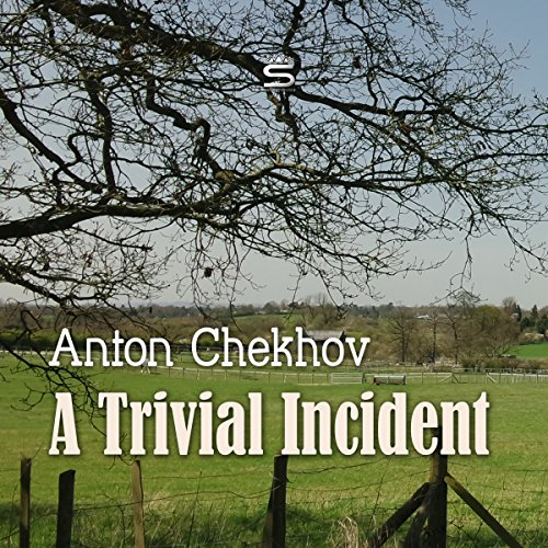 A Trivial Incident cover art