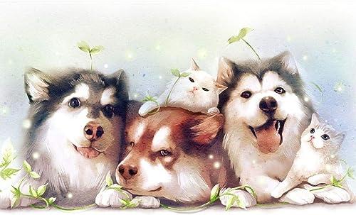 80% de descuento Fun Games- PosterPT Lindo Cartel para Mascotas, Mascotas, Mascotas, Rompecabezas de Madera, Retrato de Perro Husky de Alaska, Juego clásico de Corte y Ajuste Fino de 300-1500pc para Adultos y Niños  garantizado