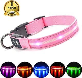 MASBRILL Collar LED Perro, Collar para Perro Luminoso Recargable y Impermeable, 3 Modos de Iluminación led y Tamaño Ajustable para Perros Pequeños Medianos Grandes(Rosa XS)
