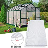 Aufun Plaque Polycarbonate 4mm pour Serres de Jardin 10,25 m² Creux Transparent Résistant aux UV, 60,5x121 cm par pièce, pour Faire Pousser et protéger Plantes, Lot de 14