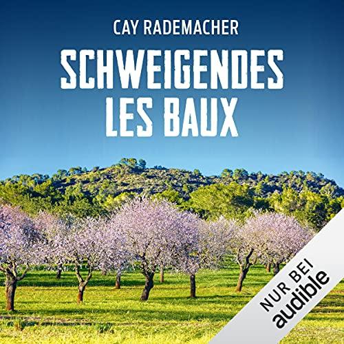 Schweigendes Les Baux. Ein Provence-Krimi: Capitaine Roger Blanc 8