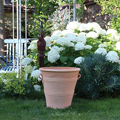 Kreta Keramik| handgefertiger Terracotta Blumentopf Pflanzgefäß mit Henkel | 50 cm | frostfest | Terrasse Garten Deko Tontopf, Salvia