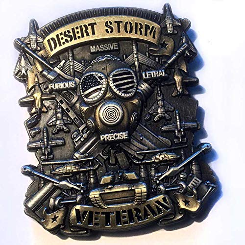 Desert Storm Veteran Military Coin