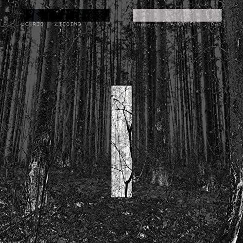 Chris Liebing feat. Ladan & Ralf Hildenbeutel