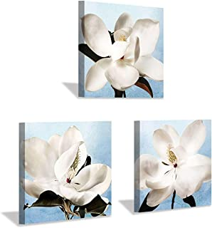 Hardy Gallery Floral Pictures Magnolia Artwork Painting: White Botanical Prints Flower Wall Art on Canvas for Bedroom Living Room (12'' x 12'' x 3 Panels)