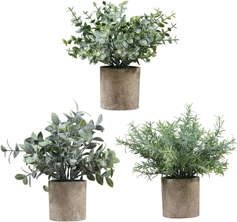 DinQ 3 pots Max New life 75% OFF Mini Potted Boxwood G Artificial Rosemary Eucalyptus