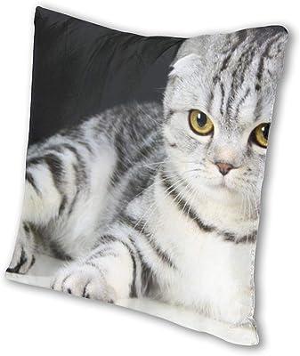 PILLOWS TABBY CAT PILLOW SHAPED CAT PILLOW CAT LOVERS PILLOW