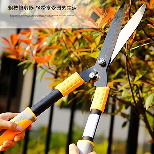 Jardin Arbre Fleur tondeuse Cisaille à tailler cisaillement d'élagage Outil Clôture Cutter Outil de coupe branches arbustes Ciseaux type A