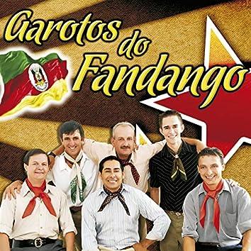 AS 20 MAIS DE GAROTOS DO FANDANGO VOL.10