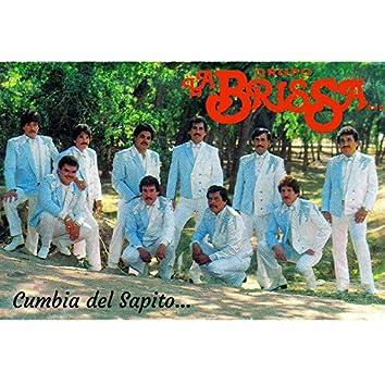 La Cumbia Del Sapito