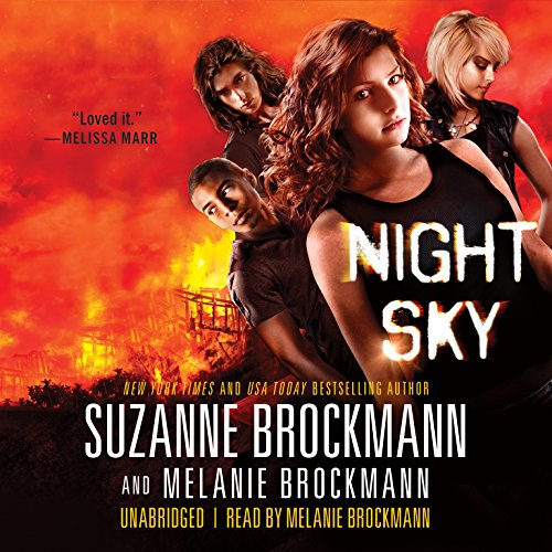 Night Sky audiobook cover art