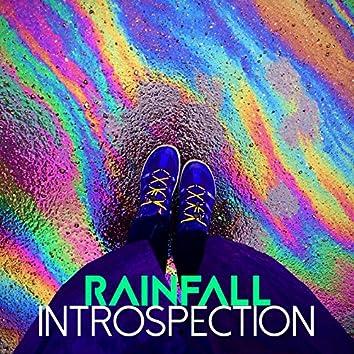 Rainfall: Introspection