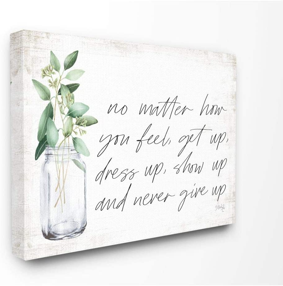 Stupell Industries No Matter How You Feel Never Give Up Inspirational Plants in Mason Jar Canvas Wall Art 16 x 20 Design by Artist Marla Rae