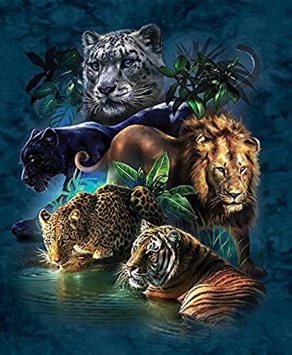 SunsOut Big Cat Prowess Jigsaw Puzzle (1000-Piece) by SunsOut