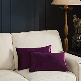 GIGIZAZA Gold Velvet Decorative Throw Pillow Covers for Sofa Bed 2 Pack Soft Cushion Cover (Purple, 12 x 20- Set of 2)