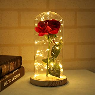 Toyfun Beauty and the Beast Rose, Enchanted Rose that Lasts Forever in Glass Dome Red Silk Rose with LED Lights on Wooden Base, Gift for Valentine's Day Wedding Anniversary Mother's Day Birthday Party