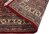 Lifetex.eu Teppich Bidjar ca. 170 x 240 cm Rot handgeknüpft Schurwolle Klassisch hochwertiger Teppich - 2