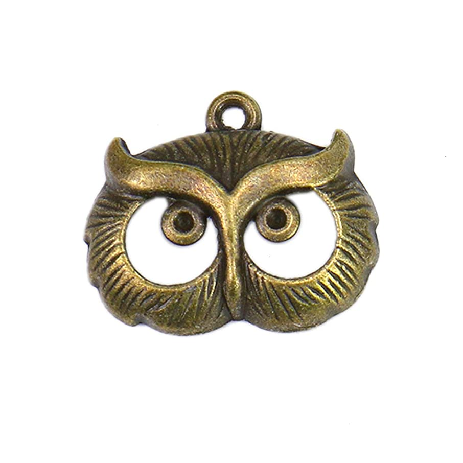 Monrocco 50 Pieces Jewelry Making Charms Tibetan Style Alloy Owl Pendants Vintage Charms for DIY Bracelet Necklace Jewelry Making
