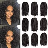 9 Packs/Lot 8 Inch Marlybob Crochet Hair Short Afro Kinky Curly Crochet Braids Hair Synthetic Braid Extensions for Black Women (4#)