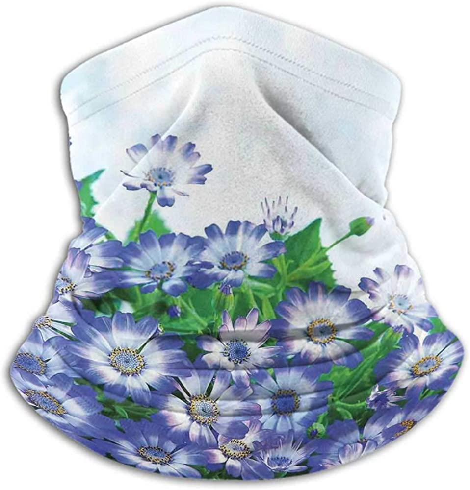 Neck Gaiters For Men Floral Fishing Neck Gaiter Sun Protection Fresh Wildflowers in Grass Vivid Spring Daisy Bloom over Sky Floral Design Print Blue Green