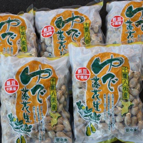 新豆 手もぎゆで落花生(ナカテユタカ)450g10個セット 千葉県八街産落花生