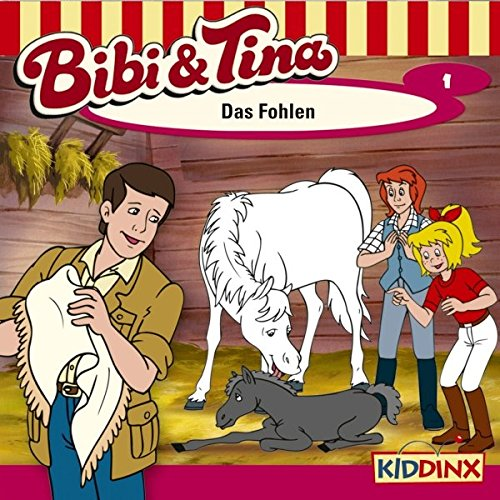 Das Fohlen audiobook cover art