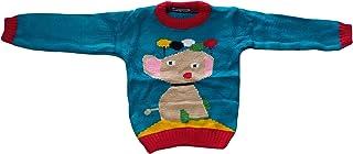 Woolen Top/ Sweatshirt for 12-18 Months Babies