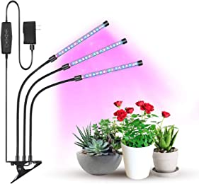 Best growing lights for plants
