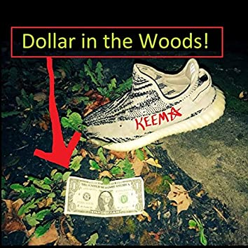 Dollar in the Woods!