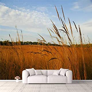 Modern 3D PVC Design Removable Wallpaper for Bedroom Living Room Restored Tall Grass Prairie Wallpaper Stick and Peel Wall...