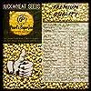 Pearl's Superfood Buckwheat Seeds | Kuttu Giri | Groat Kasha | for Eating on Fasts… (Pack of 1 (800 GMS)) #5