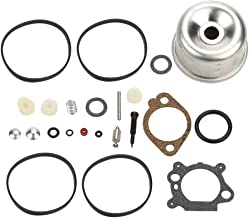 Panari 493762 Carburetor Overhaul Kit Float Bowl for Briggs and Stratton 498260 492495 796611 493640