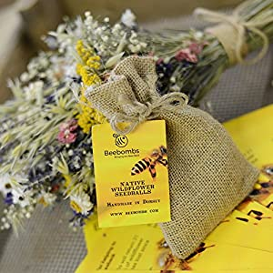 Beebombs Handmade Wildflower Habitat Seedballs #bringthebeesback