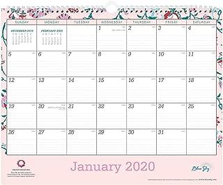Blue Sky 2020 Monthly Wall Calendar, Twin-Wire Binding, 15